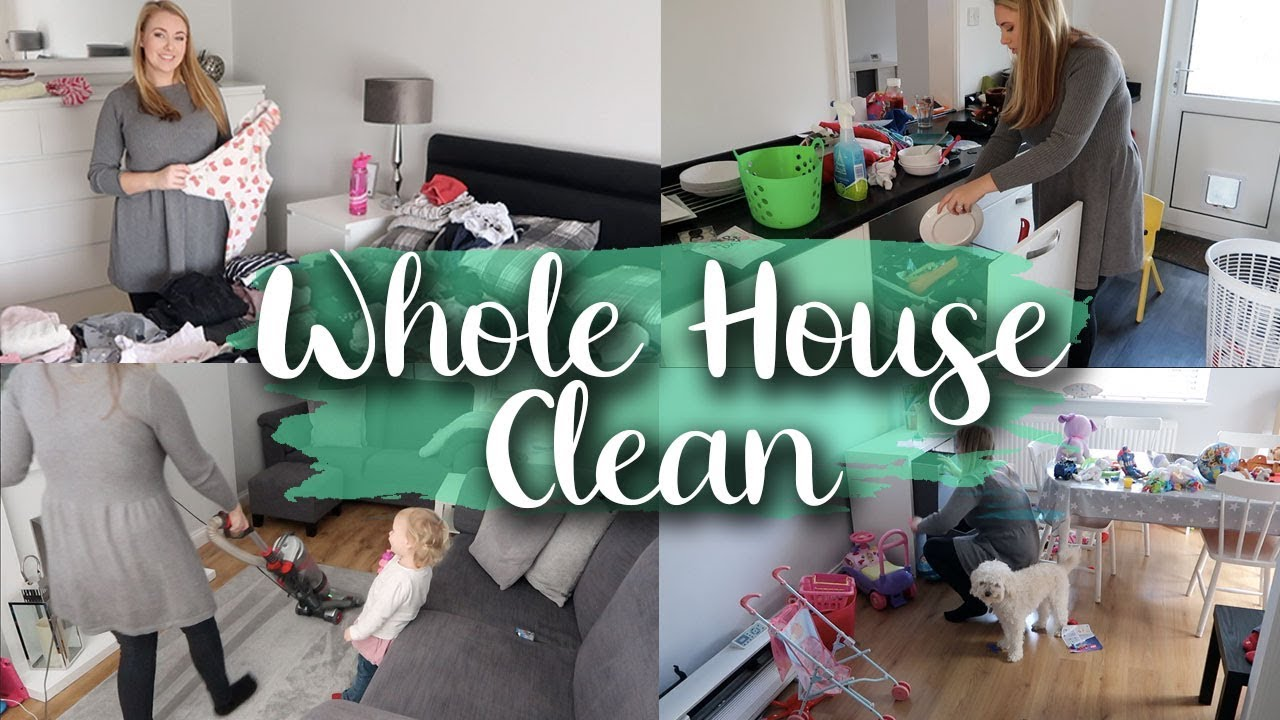 WHOLE HOUSE CLEAN BEFORE GUESTS/ VISITORS - DEEP CLEAN MY LIVING ROOM, HALLWAY, ETC. LOTTE ROACH