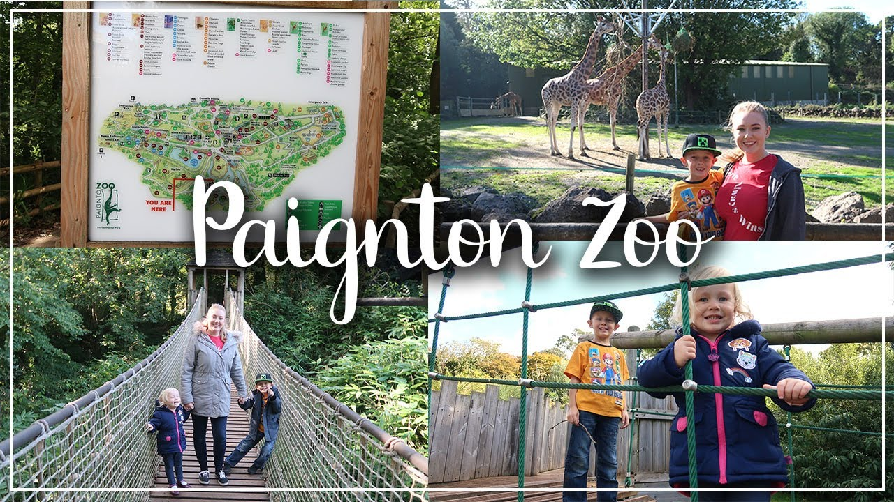 MY PAIGNTON ZOO REVIEW - TAKE A LOOK AROUND PAIGNTON ZOO AND SEE WHAT THEY HAVE - LOTTE ROACH