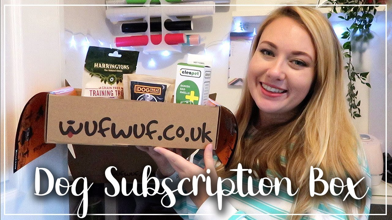 DOG SUBSCRIPTION BOX OPENING - WUF WUF SUBSCRIPTION BOX - DOGGY HAUL - LOTTE ROACH