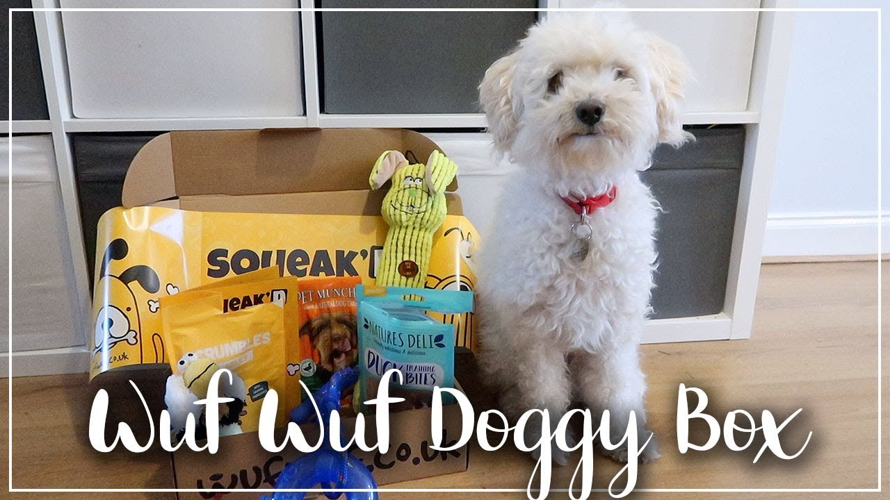 DOGGY SUBSCRIPTION BOX OPENING - WUF WUF SUBSCRIPTION UNBOXING - LOTTE ROACH