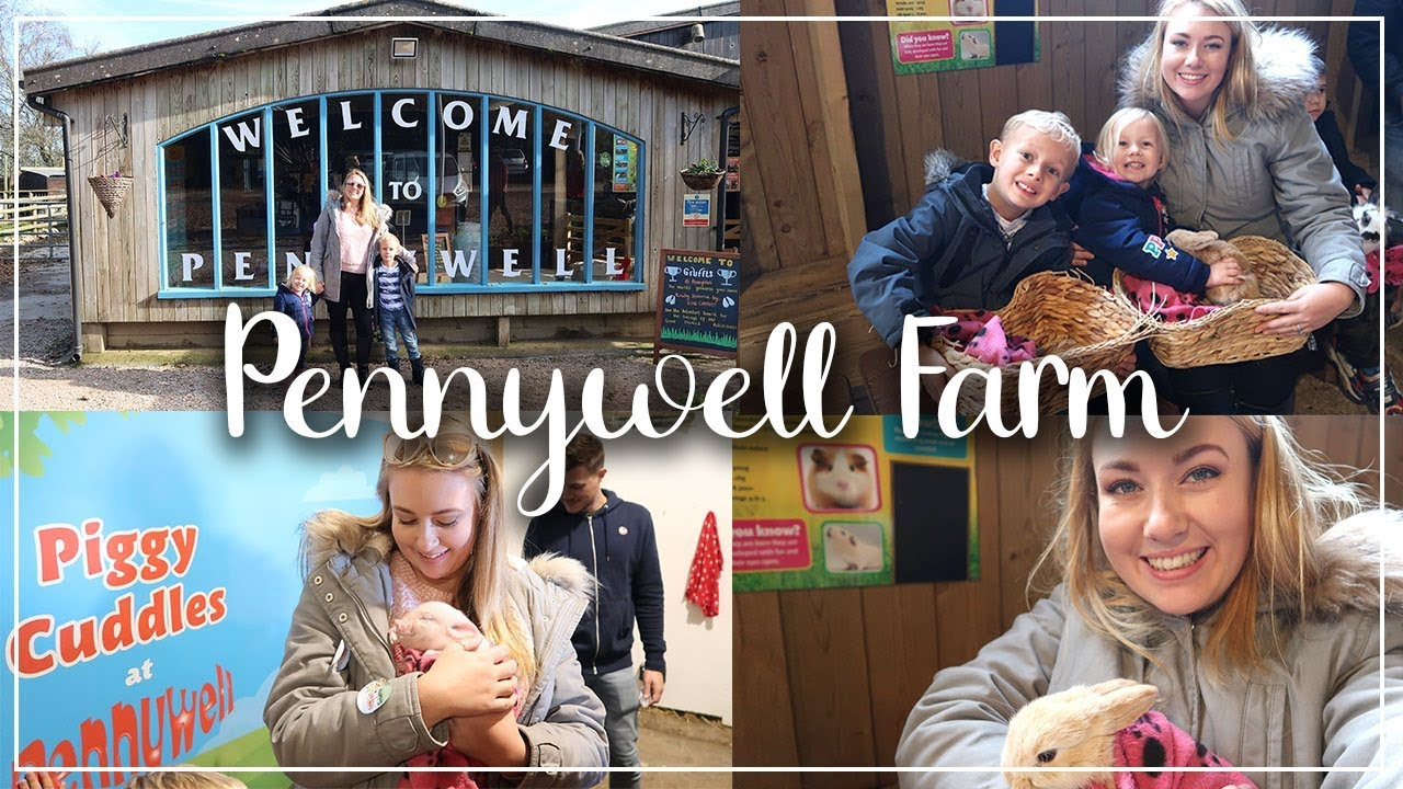 PENNYWELL FARM REVIEW AND VISIT - A DAY IN THE LIFE IN DEVON - LOTTE ROACH