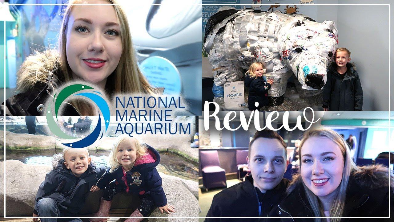 NATIONAL MARINE AQUARIUM REVIEW - TAKE A LOOK AROUND PLYMOUTH AQUARIUM - LOTTE ROACH