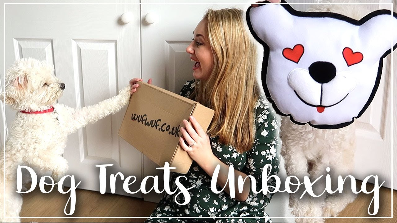 WUF WUF DOG SUBSCRIPTION UNBOXING AND REVIEW - VALENTINES BOX - LOTTE ROACH