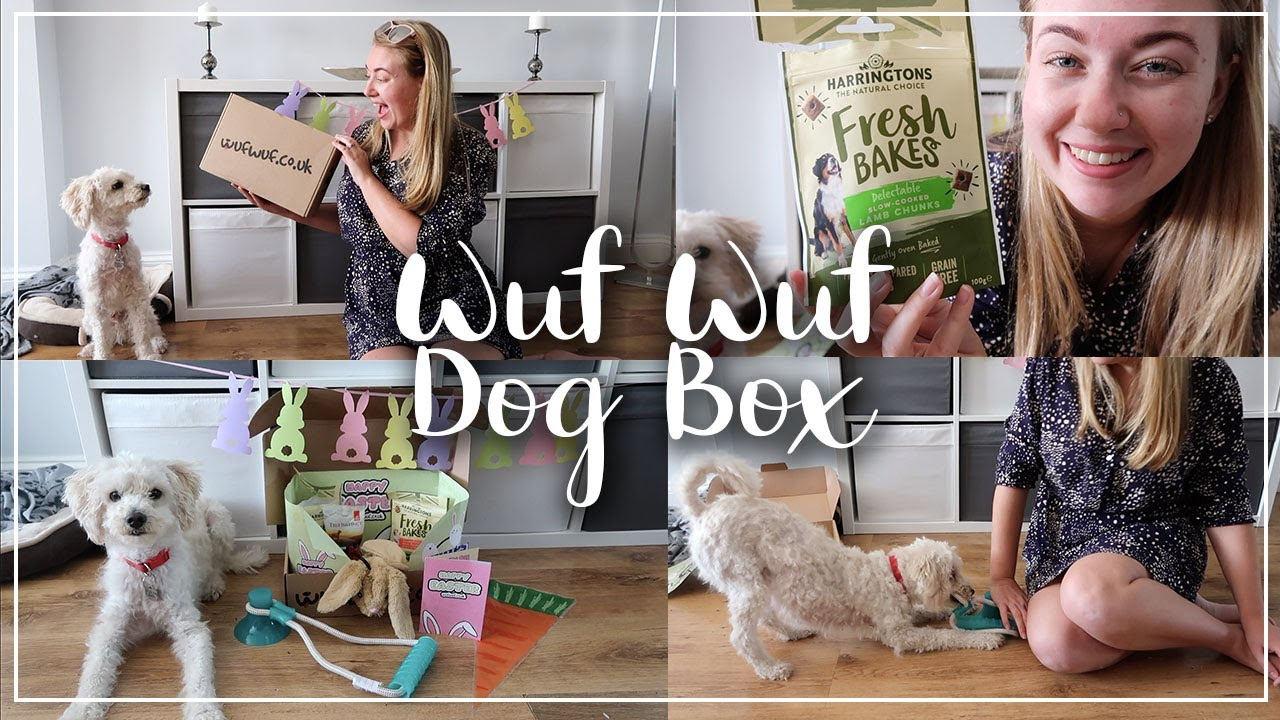IS WUF WUF DOG SUBSCRIPTION WORTH IT ??? UNBOXING AND REVIEW  - LOTTE ROACH