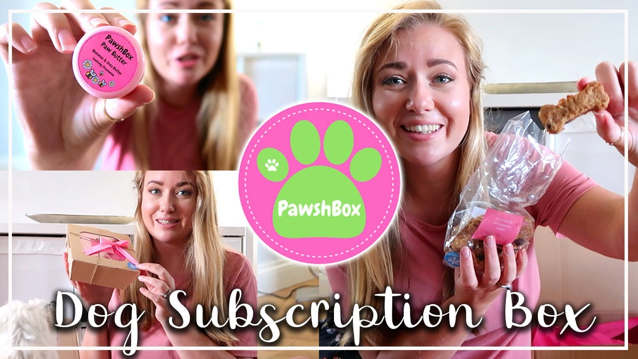 DOG BODY BUTTER??? PAWSHBOX DOG SUBSCRIPTION BOX UNBOXING - LOTTE ROACH